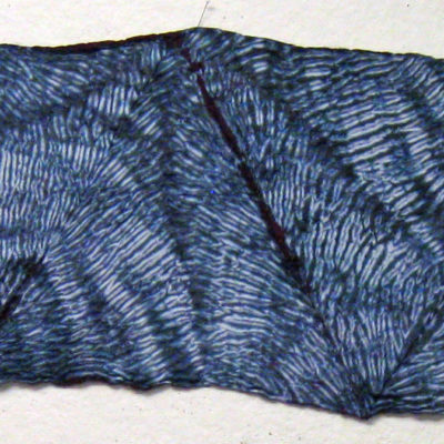 Full Length of Textured Mulberry Silk Shibori Scarf by Maureen Jakubson